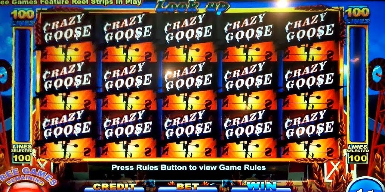 Crazy Goose Slot Review